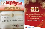 Chinese insurance company of the year 2016